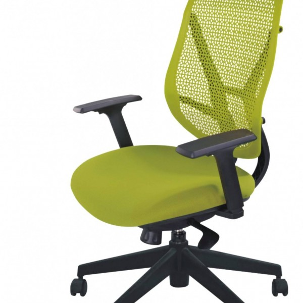 LTC25  Manager Chair
